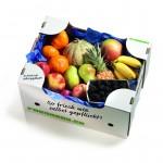 Mitarbeiter Früchtebox