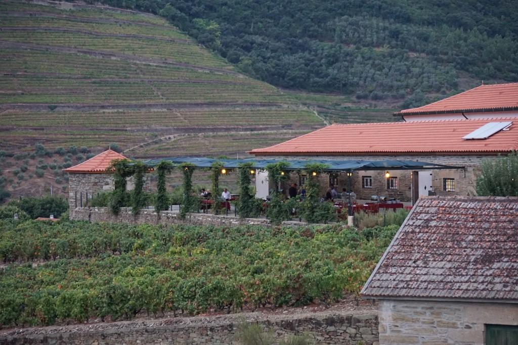 Weingut im Valley Douro